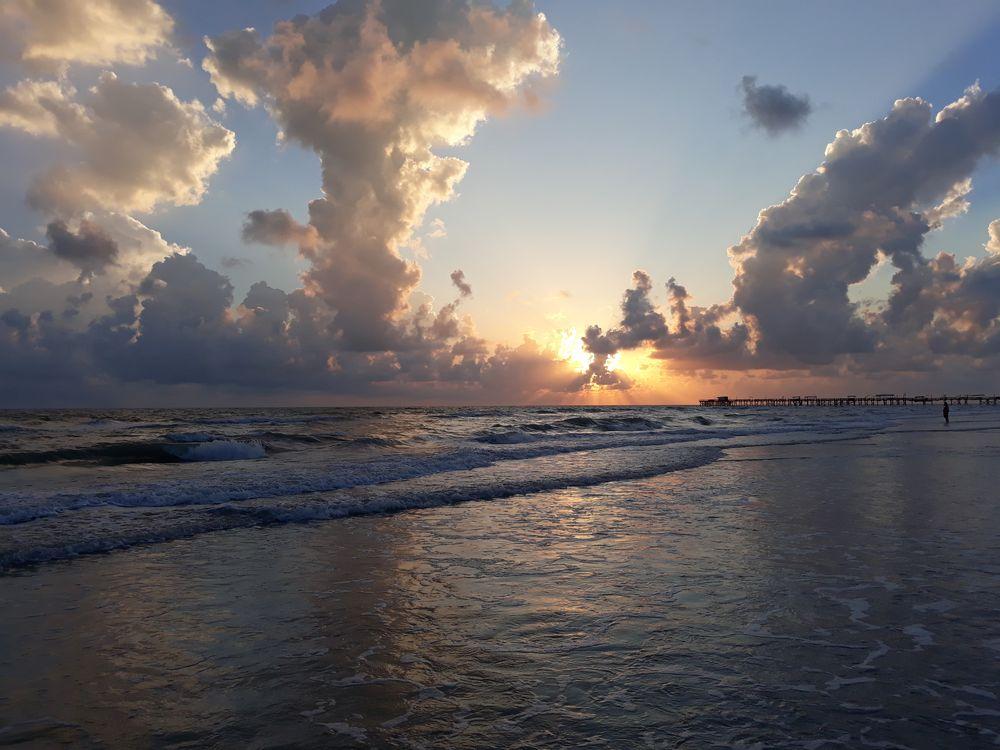 Venice, FL & Anna Maria Island, FL